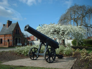 The cannon in spring